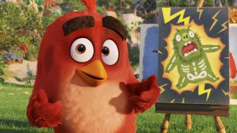 Meet Red from The Angry Birds Movie