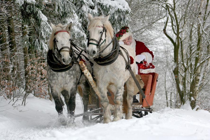 Christmas Song Quiz - Horses