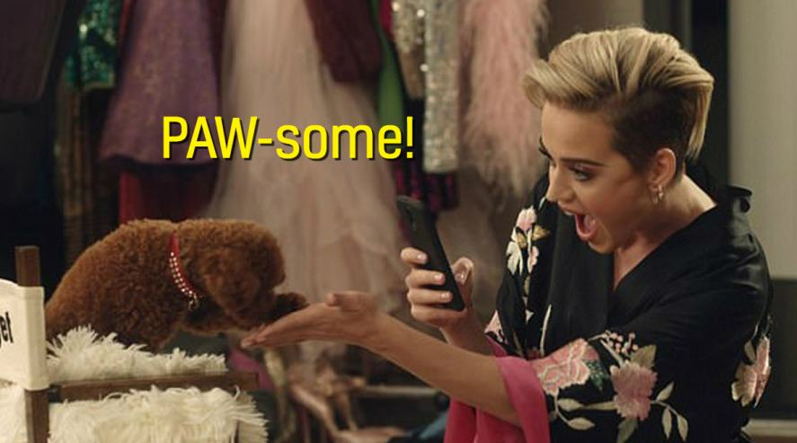 Katy Perry and Nugget