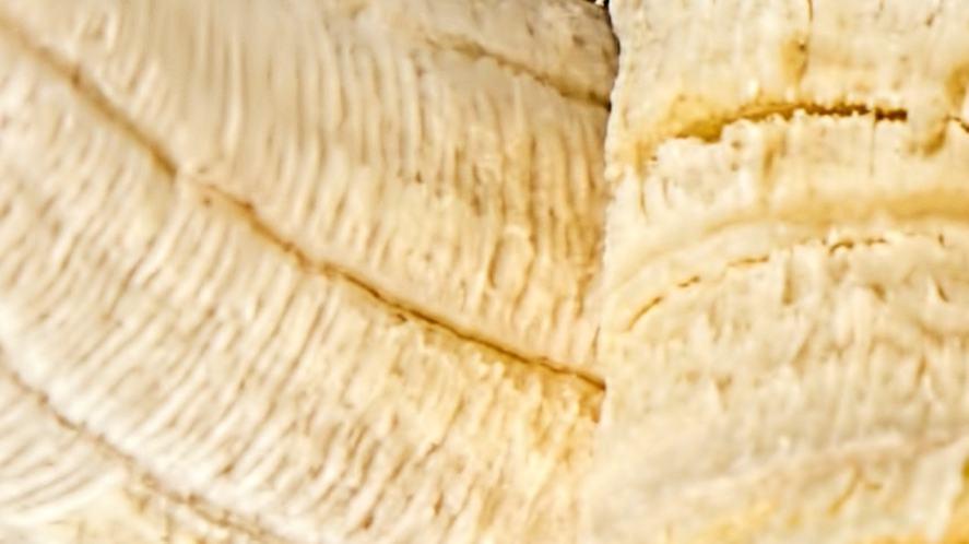 A close up of fruit
