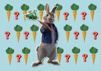Peter Rabbit movie quiz