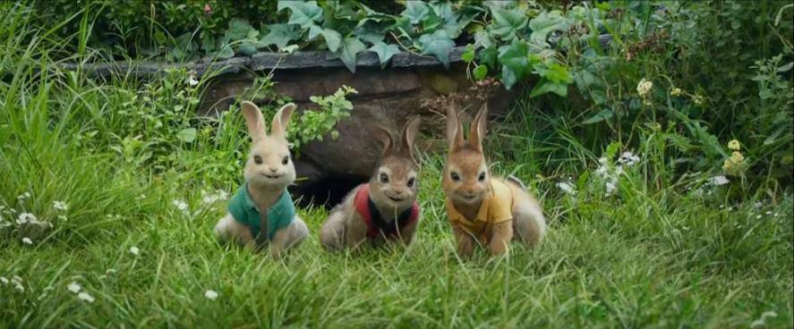 Peter Rabbit's triplet cousins