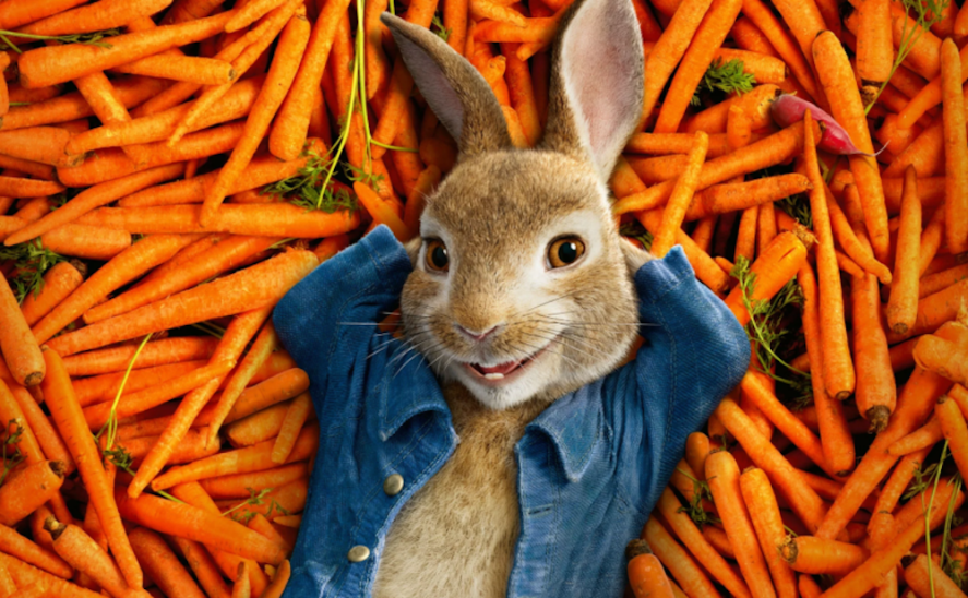 Peter Rabbit lying on a bed of carrots
