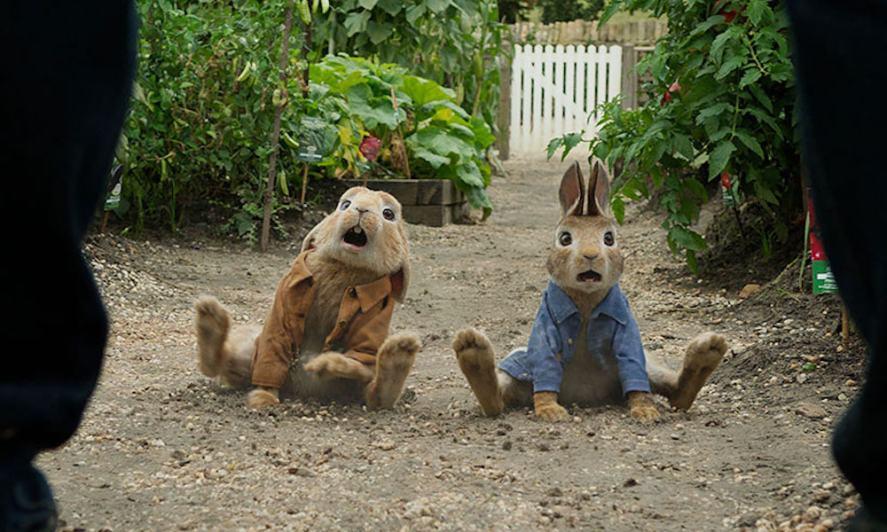 Peter Rabbit and his cousin Benjamin