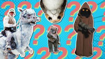 Star Wars creature quiz