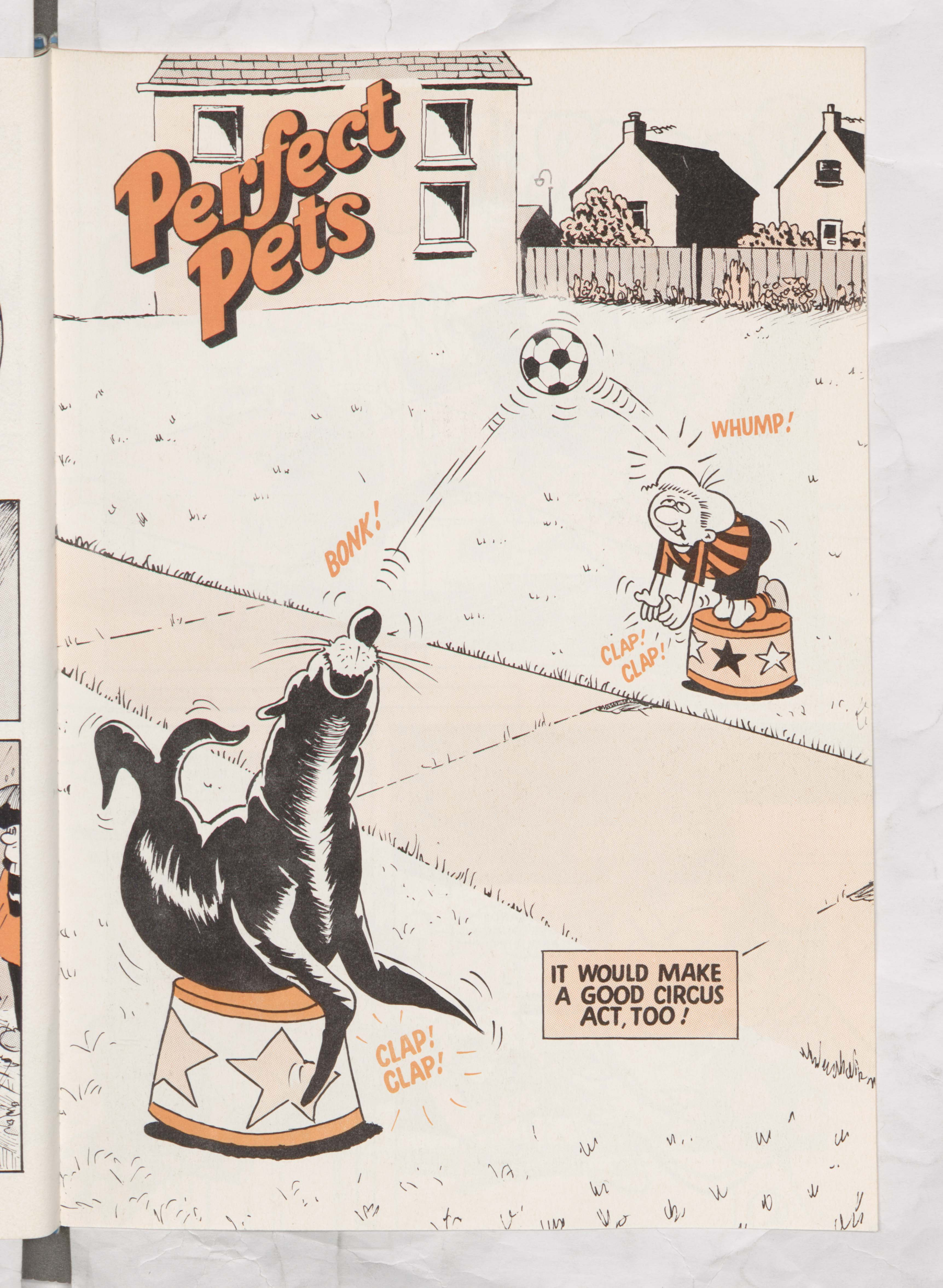 Perfect Pets - Ball Boy - Page 5 - Beano Annual 1979