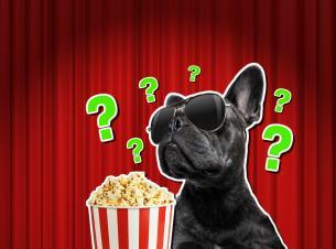 Film personality quiz