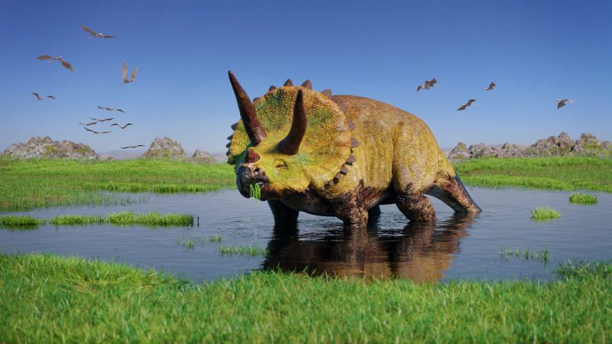 This dinosaur had three horns on its head