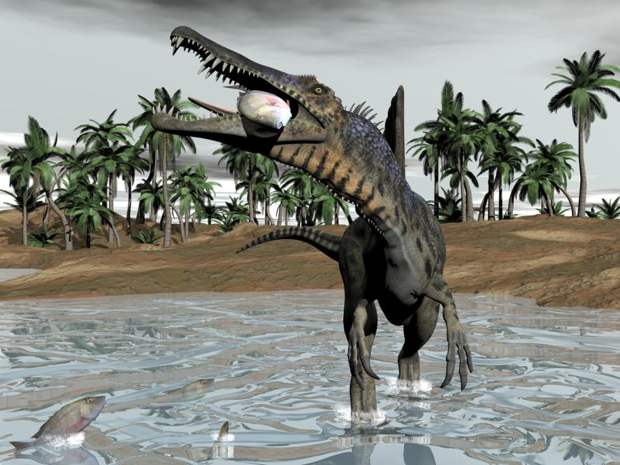 Spinosaurus dinosaur eating fish