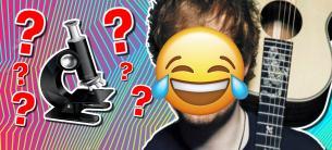 A face zoom quiz!