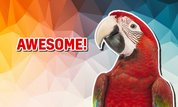 A parrot is is pleased at your score