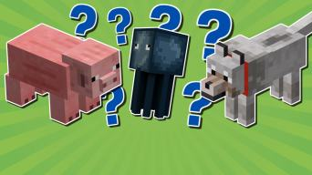 Minecraft animal quiz