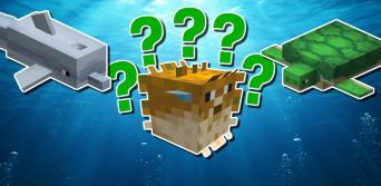 Minecraft underwater animal quiz