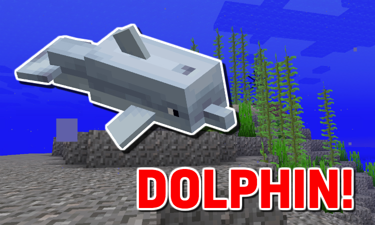 Minecraft Dolphin