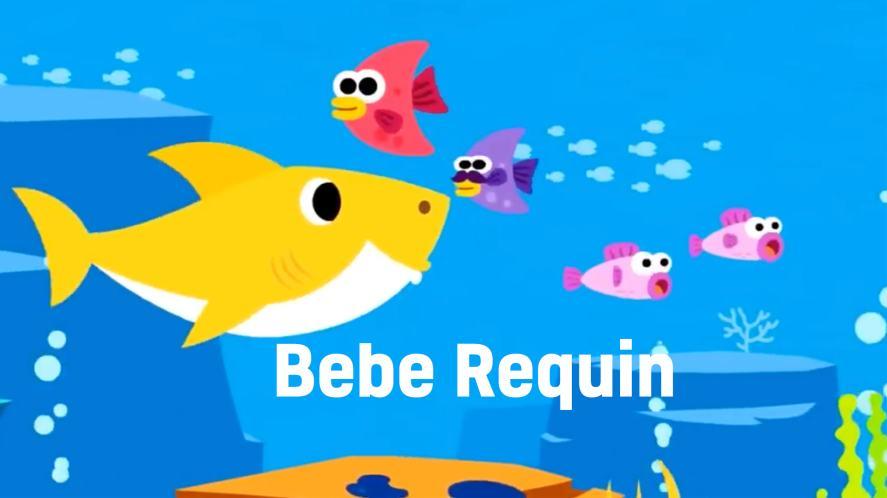 Baby Shark and fish   Baby Shark Quiz