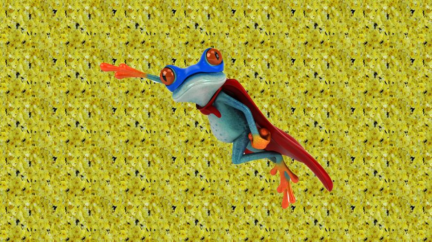 A frog in a cape