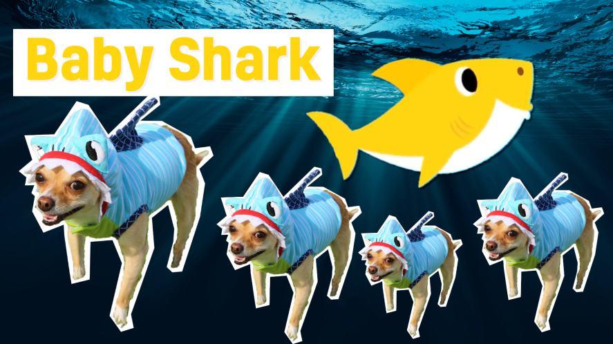 Baby Shark and fish