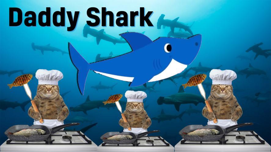 Daddy Shark and starfish