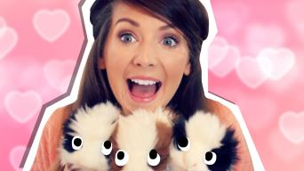 zoella and her pigs