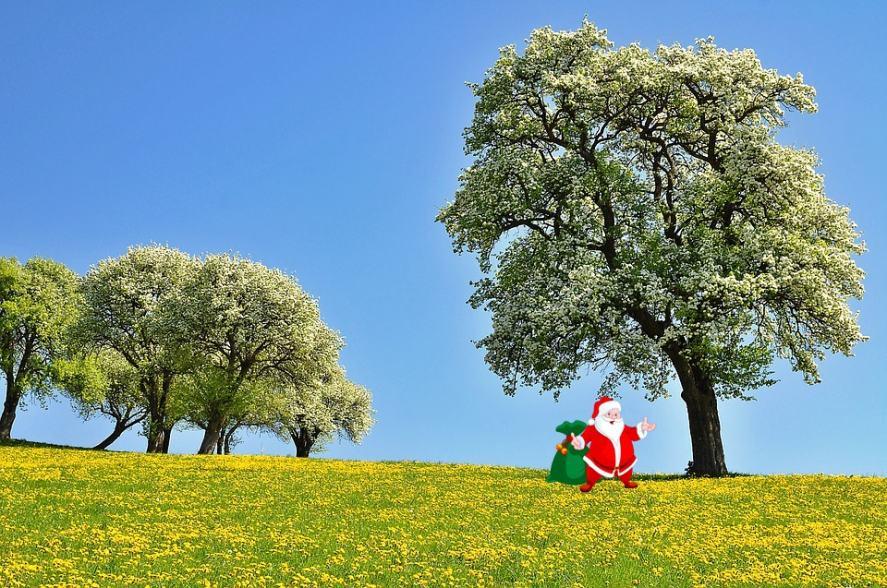 Santa standing under a big tree
