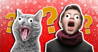 A cat and boy singing Christmas carols