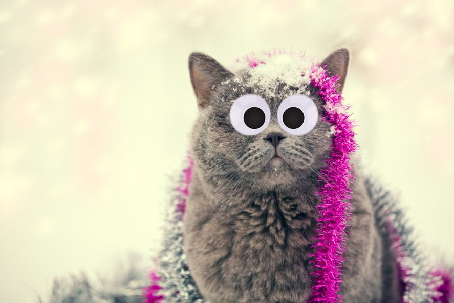 A cat tangled in tinsel