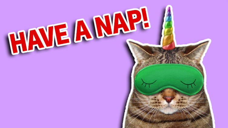 A cat dressed as unicorn having a nap