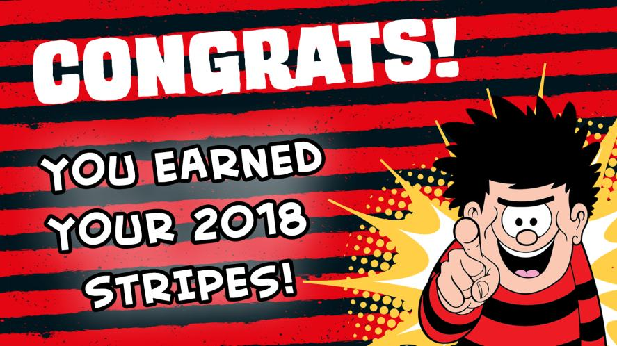 YOU earned your 2018 stripes!