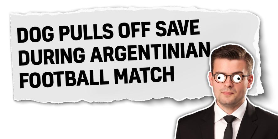Dog pulls off save during Argentinian football match