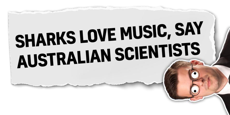 Sharks love music, say Australian scientists