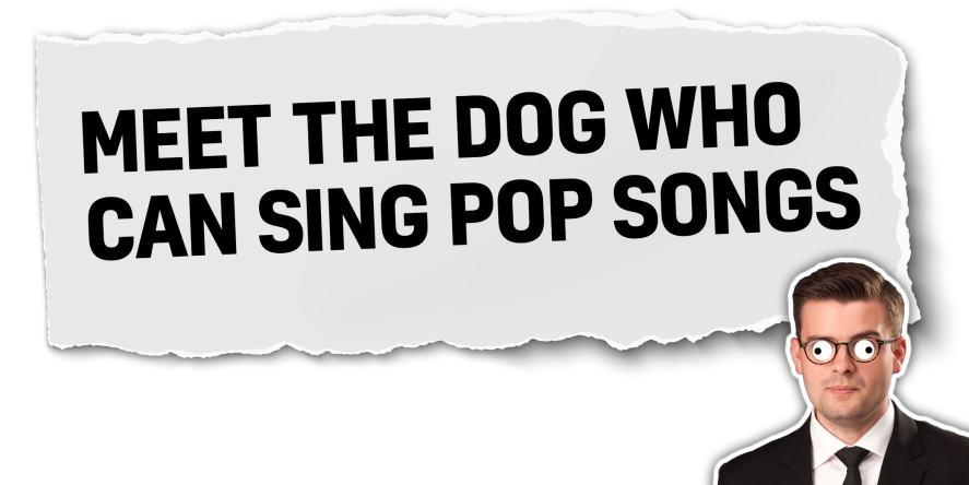 Meet the dog who can sing pop stars