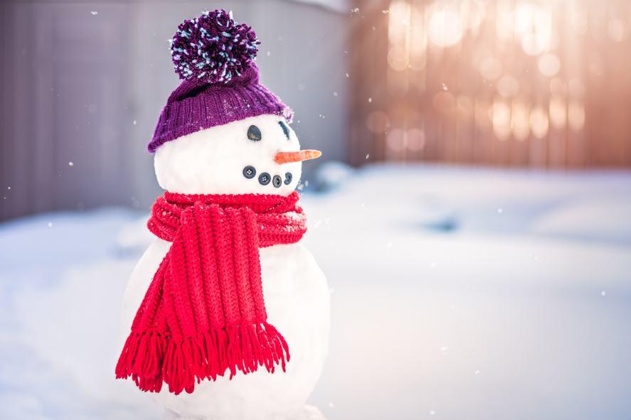 A snowman in a garden