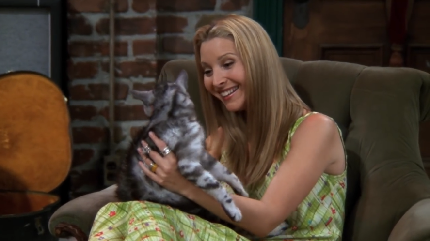 Phoebe holds a cat