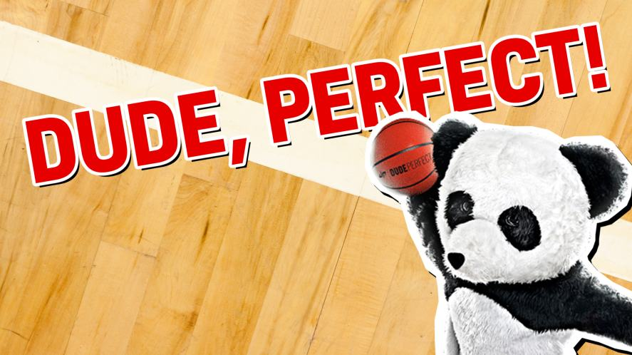 The Dude Perfect Panda says your result is a total slam dunk!