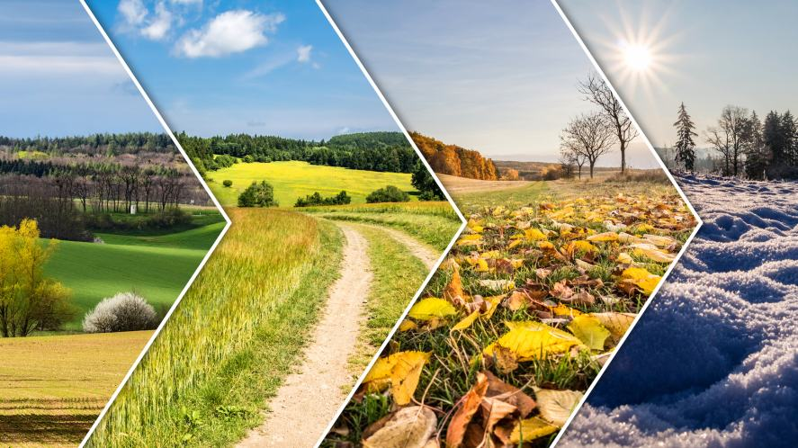 A collage of pictures showing the four seasons