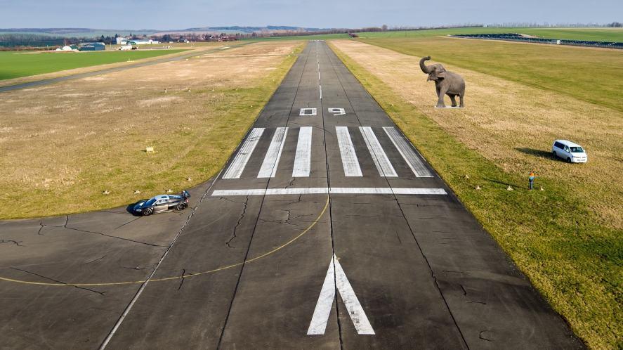 An elephant standing next to a runway