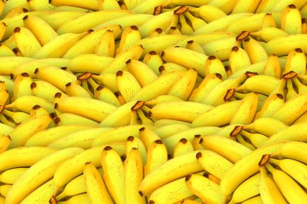 All of the bananas