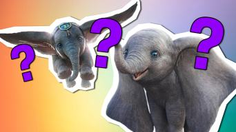 Could you help an elephant fly quiz?