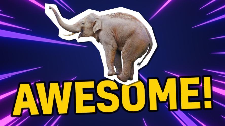 Elephant says awesome!