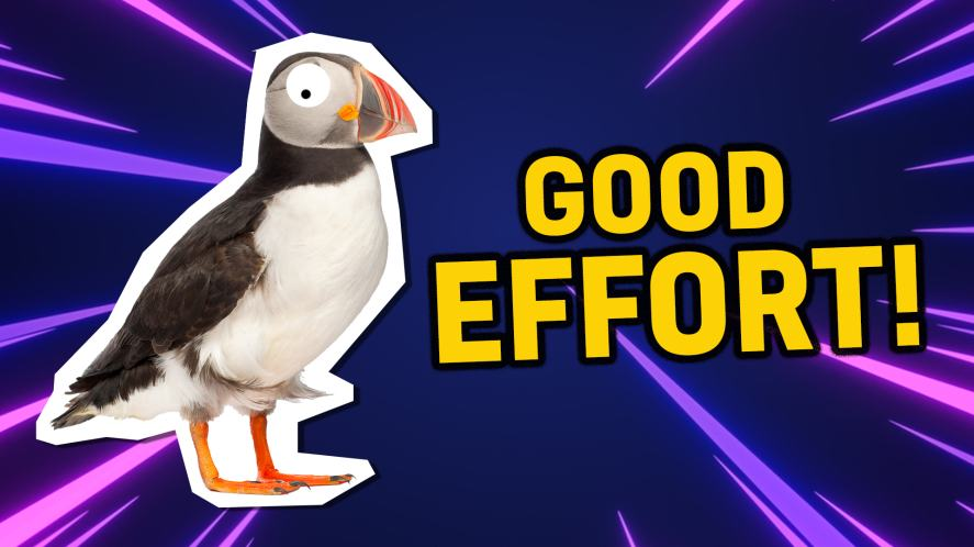Puffin says good effort