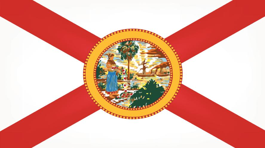 Flag 10