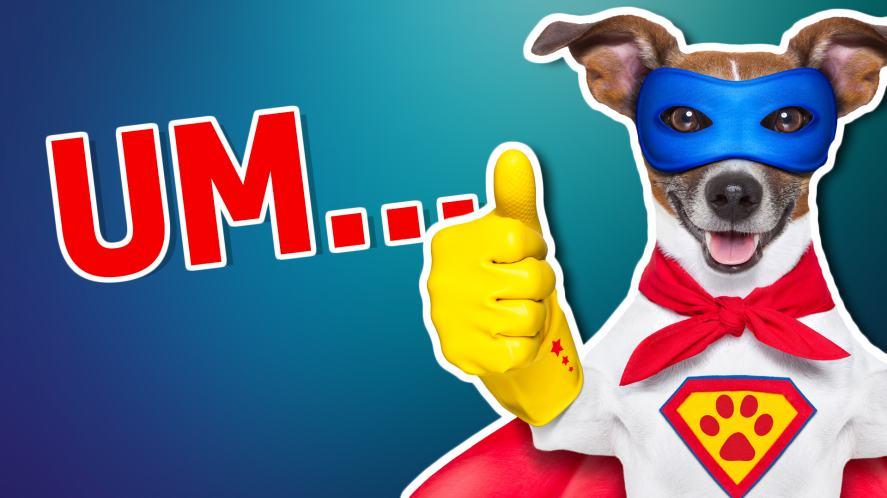 A dog dressed as a superhero