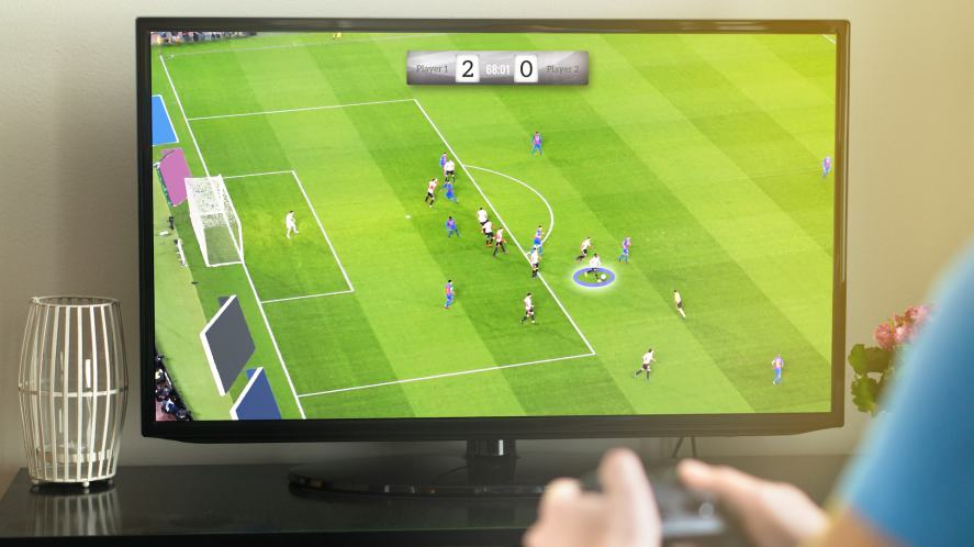 A person playing a football video game