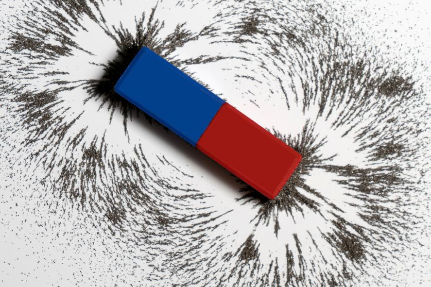 A magnet surrounded by iron filings | Science Quiz