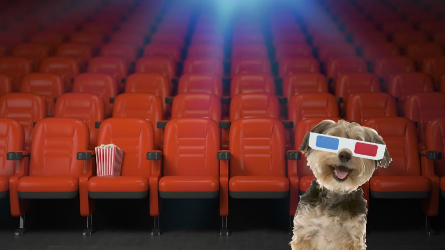 A dog wearing old 3D glasses at the cinema
