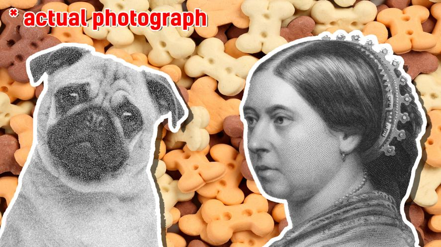 Queen Victoria and a pug