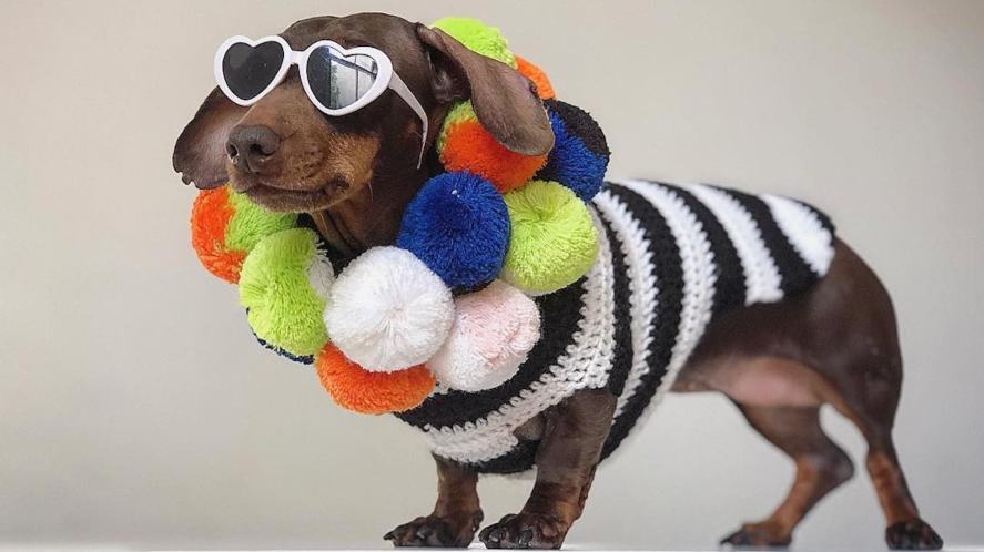 Pops looking stylish in sunglasses and pom-poms
