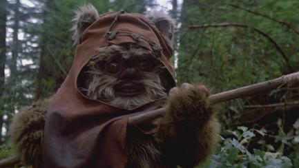 Wicket in Return of the Jedi