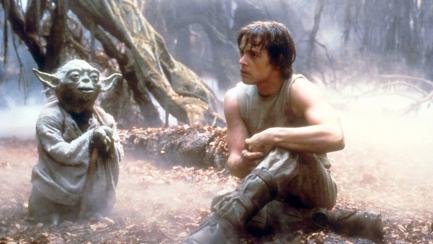 Luke and Yoda training at the swamp