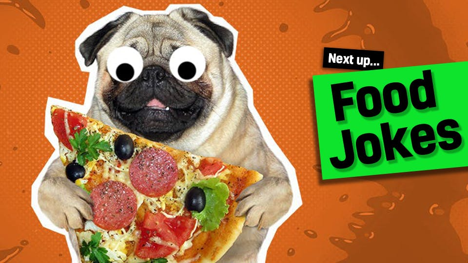 Link to food jokes from funny cheese jokes: a dog holding a slice of pizza | best cheese jokes